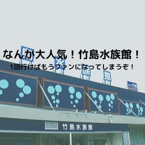 愛知県蒲郡市の竹島水族館が面白い!内容が濃すぎる館内を楽しんでみる?