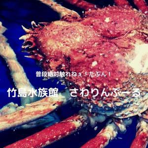 竹島水族館で深海系生物に触ってみた!オオグソクムシとか普通触る機会無いよ!