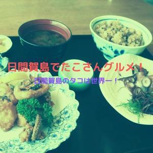 日間賀島のグルメ!民宿松鶴の生しらす丼やたこづくし定食が美味しい。