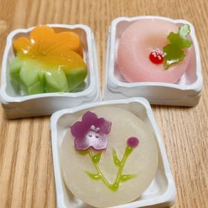 和菓子が食べたい!!