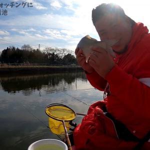 神扇池で行われたへら専科の管釣りウォッチングに参加させて頂きました