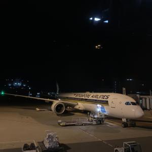 ブルネイ1【世界初!!〇〇が就航】シンガポール航空B787-10機搭乗記
