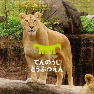 天王寺動物園も9月から休日事前予約開始。年間パスなら予約不要