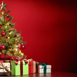クリスマスプレゼント?なんでもいいよ