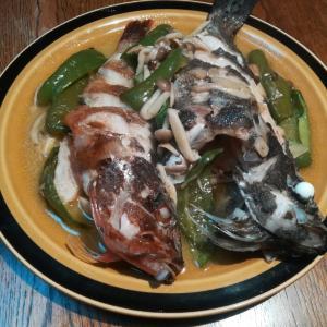 【時短料理】釣れたメバルとカサゴのアクアパッツァのレシピ