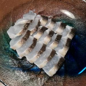 【簡単料理】釣れたマゴチの霜降りレシピ