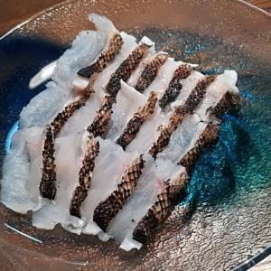【簡単料理】釣れたタケノコメバルの霜降り造りレシピ