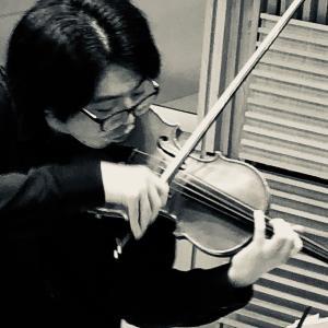 ヴァイオリン奏法