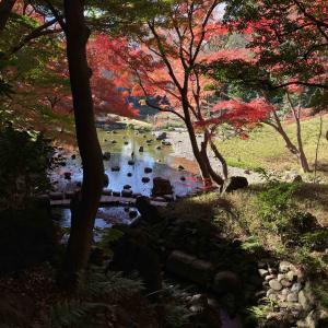 小石川後楽園の紅葉 Part2