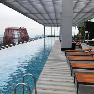 シンガポールでルーフトップ プールがあるコンドミニアム