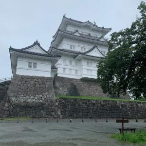 雨の中の小田原城と家の近くにできた焼肉屋