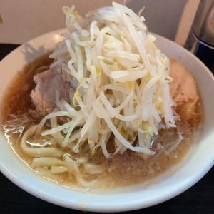 朝から豚星。ズーラシア〜鎌倉スープカレー