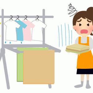 部屋干し地獄からの解放を目指して、昇降式洗濯物干し(ホシ姫サマ、ホスクリーン)検討