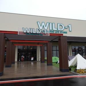 WILD-1幕張店に初訪店