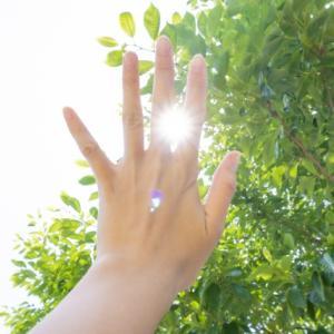 """【8/8獅子座満月】好きなことをあなたの""""しごと""""にするために"""