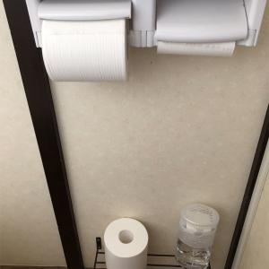 【ズボラ主婦】トイレのものは浮かせたい【捨て活】