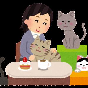 【猫さんと暮らす】猫の飼い主の宿命