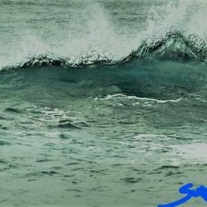 活きている波