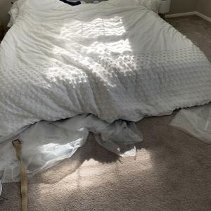 渡米1年を迎える直前でようやくベッドが完成!!!!