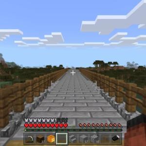 ひまわり村への長~い橋 + 牧場