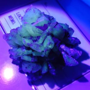 趣味の好物収集 アラゴナイト アポフィライト スコレサイト バラ状石膏 (2020浅草橋ミネラルマルシェ購入品その2)