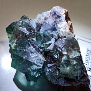 趣味の鉱物収集 ベラクルスアメジスト カイヤナイト フローライト(2020浅草橋ミネラルマルシェ購入品その3)
