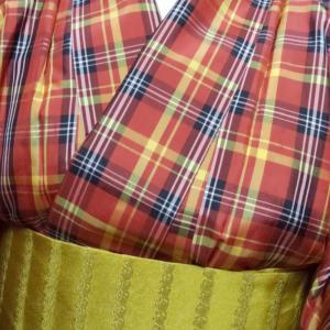 明るいポリの着物きました。