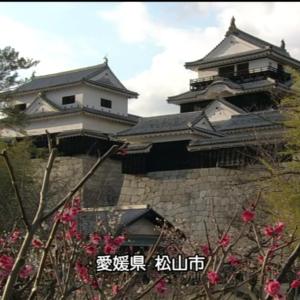 日本の愛媛県を舞台にした台湾ドラマ『アリスへの奇跡』のレビュー