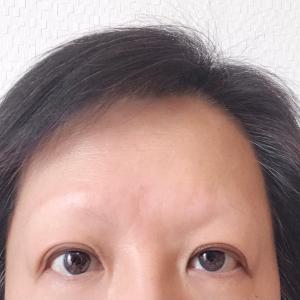 高い眉毛と安い眉毛