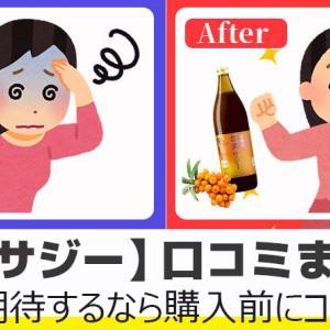 【豊潤サジー】口コミ・評判まとめ!効果を期待するならコレを見て!