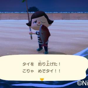 【悲報】PSO2、魚釣りゲーと化してしまうwwwwww
