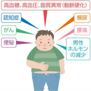 内臓脂肪を減らす5つの習慣。運動せずに25kgやせた医師の日常ダイエット