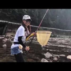 和歌山・有田川の二川ダム下流で海産アユ83匹爆釣