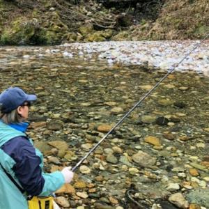 ねらえ「渓流の女王」 アマゴ釣りに50人 深い森で糸垂らす