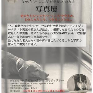 児玉小枝さんの 老犬の涙 写真展延期日程の報告