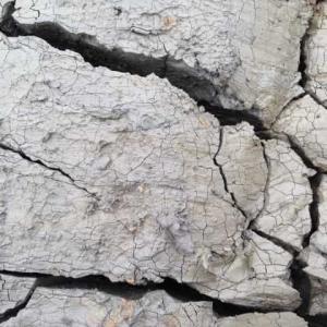 世界・日本の地震ランキングから都道府県の地震ランキング。