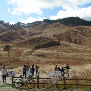 兵庫県 砥峰高原 ススキの草原