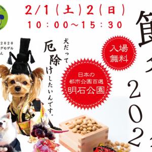 【節分ドッグ2020】ワンちゃんと一緒に厄除けイベント!兵庫県明石公園西芝生広場で開催!鬼さん衣装で出かけよう♪
