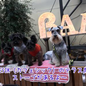 【カフェシック】靭公園近くのオシャレカフェ♡ストーブ付きのテラス席でワンちゃんと同伴できます!