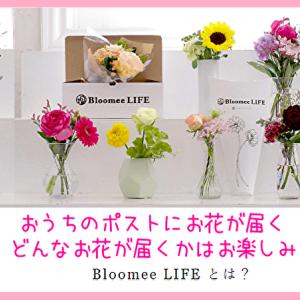 【ブルーミーライフ】ポストに届くお花の定期便って評判いいの?気になる口コミと実際に注文してみた感想!