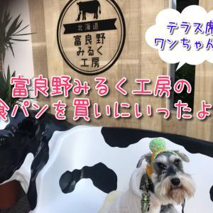 【富良野みるく工房】大阪市天王寺わんこテラス席OK!北海道のミルクを使ったふんわり食パンやスイーツが大人気!