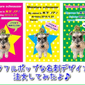 【愛犬の名刺】裏表2000円!カラフルポップな可愛い名刺デザインを注文してみた!オフ会やイベントで大活躍!