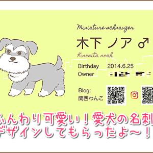 ワン友さんへのご挨拶に♪ふんわり可愛いらしい♡イラスト込みの名刺デザインが格安の2000円で作れるよ!