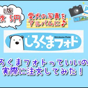 【激安1枚5円】しろくまフォトの写真プリントを注文してみた♪評判通りの高品質なのか?口コミレビュー!
