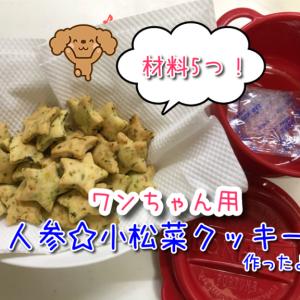 【犬用クッキー】材料4つ!人参のと小松菜を使用したワンちゃんの野菜クッキー☆ご褒美やしつけに最適♪