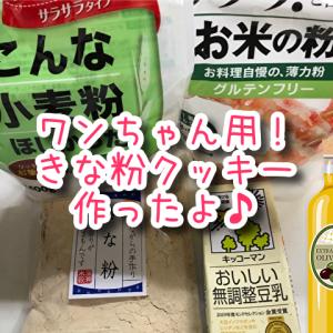 【犬用きなこクッキー】簡単!ワンちゃんの手作りオヤツレシピ!材料5つですぐ作れる♪