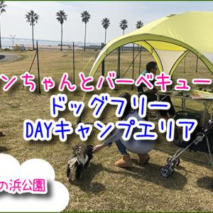 二色の浜公園☆海浜緑地のドッグフリーDAYキャンプエリア!ワンちゃんリードフリーでバーベキューできるよ♪※エリア内のみ