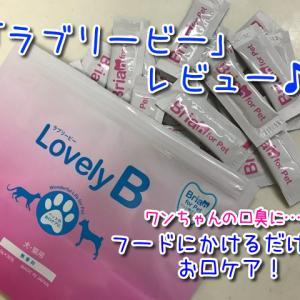 【ラブリービー】ペットの口臭サプリ2か月使用レビュー!歯磨き嫌いなワンちゃんでも食事に混ぜるだけで簡単にお口ケア!