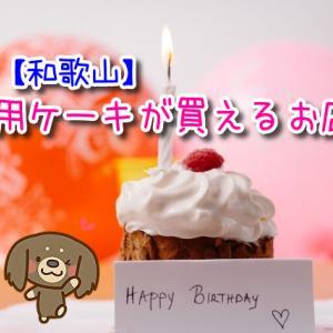 和歌山で犬用ケーキを販売しているお店はここ!ワンちゃんの誕生日や特別な日のご馳走に♡