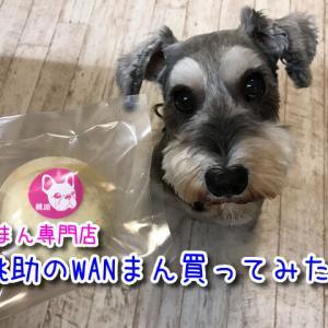【桃助】手作りにこだわった豚まん専門店!ワンちゃんの肉まん(WANまん)が人気!大阪靭公園近く!